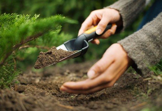 Geef je planten een goede start